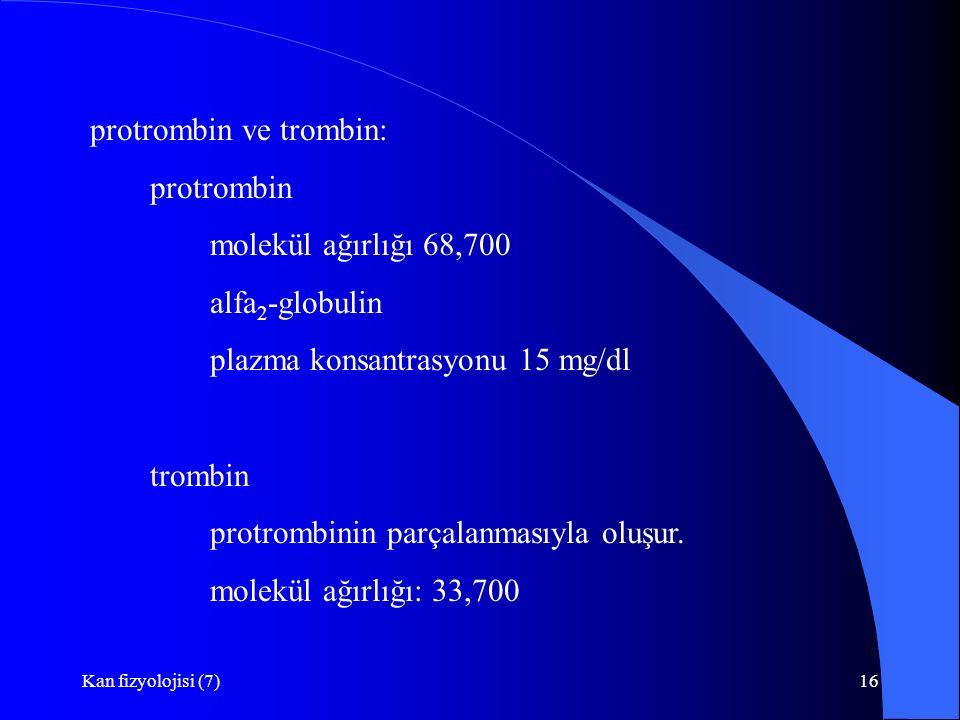 Kan fizyolojisi (7)16 protrombin ve trombin: protrombin molekül ağırlığı 68,700 alfa 2 -globulin plazma konsantrasyonu 15 mg/dl trombin protrombinin parçalanmasıyla oluşur.