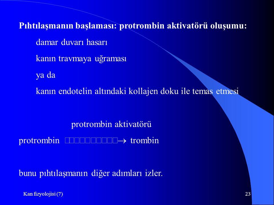 Kan fizyolojisi (7)23 Pıhtılaşmanın başlaması: protrombin aktivatörü oluşumu: damar duvarı hasarı kanın travmaya uğraması ya da kanın endotelin altındaki kollajen doku ile temas etmesi protrombin aktivatörü protrombin  trombin bunu pıhtılaşmanın diğer adımları izler.