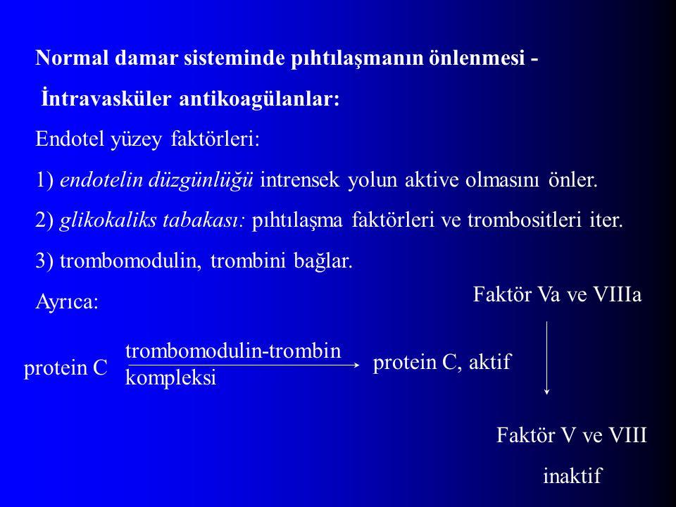 Normal damar sisteminde pıhtılaşmanın önlenmesi - İntravasküler antikoagülanlar: Endotel yüzey faktörleri: 1) endotelin düzgünlüğü intrensek yolun akt