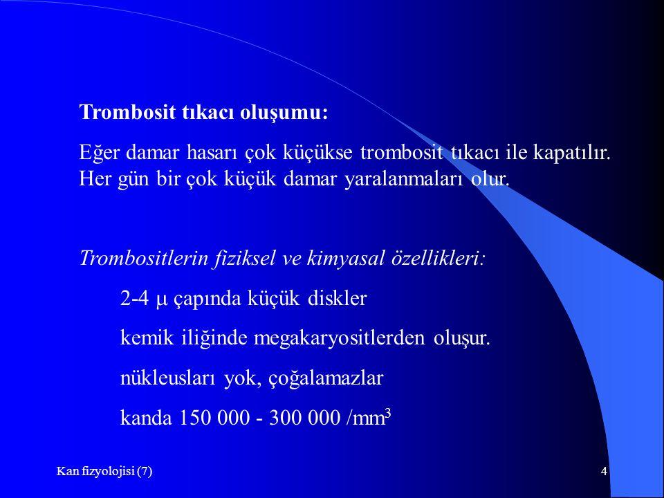 Kan fizyolojisi (7)4 Trombosit tıkacı oluşumu: Eğer damar hasarı çok küçükse trombosit tıkacı ile kapatılır. Her gün bir çok küçük damar yaralanmaları