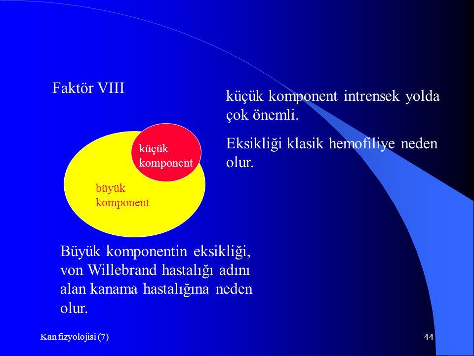 Kan fizyolojisi (7)44 Faktör VIII büyük komponent küçük komponent Büyük komponentin eksikliği, von Willebrand hastalığı adını alan kanama hastalığına neden olur.