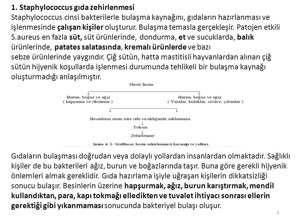 2.Clostridium Botulinum Gıda Zehirlenmesi Botulizmde rol oynayan toksin botulin olarak tanımlanır.