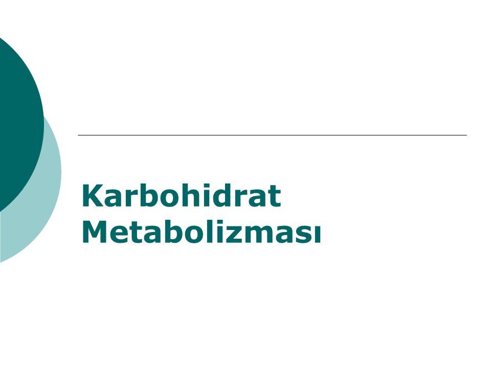 Giriş  Karbonhidratlar, önemli gıda maddelerinin en başında yer alır.