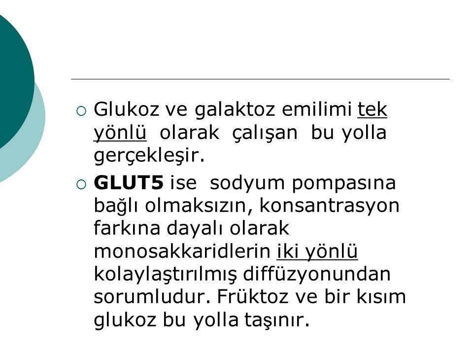  Glukoz ve galaktoz emilimi tek yönlü olarak çalışan bu yolla gerçekleşir.  GLUT5 ise sodyum pompasına ba ğ lı olmaksızın, konsantrasyon farkına day