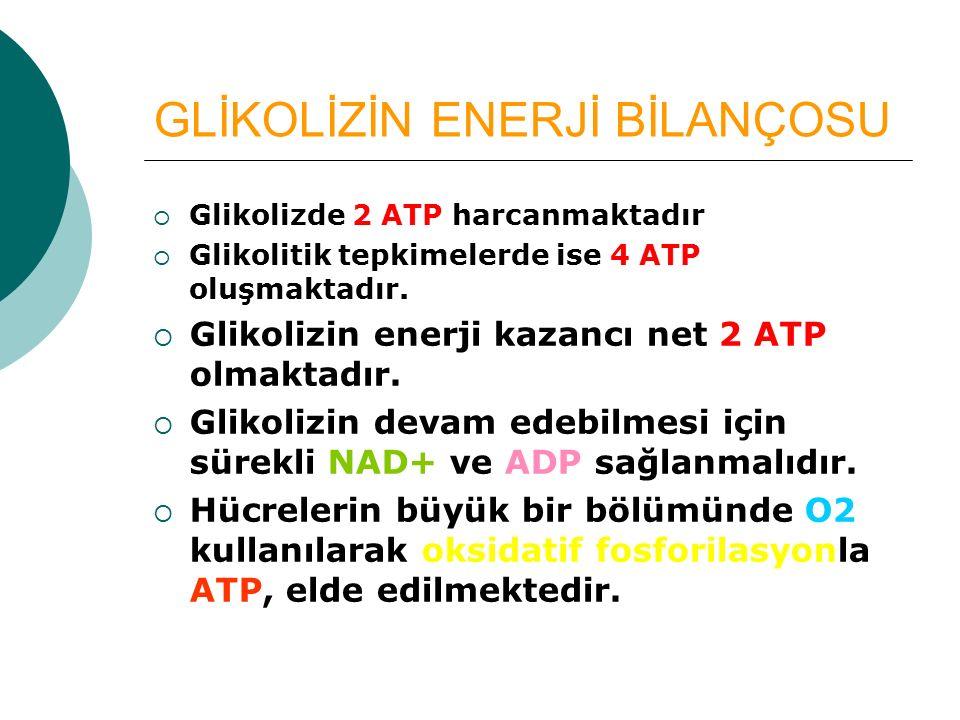 GLİKOLİZİN ENERJİ BİLANÇOSU  Glikolizde 2 ATP harcanmaktadır  Glikolitik tepkimelerde ise 4 ATP oluşmaktadır.  Glikolizin enerji kazancı net 2 ATP