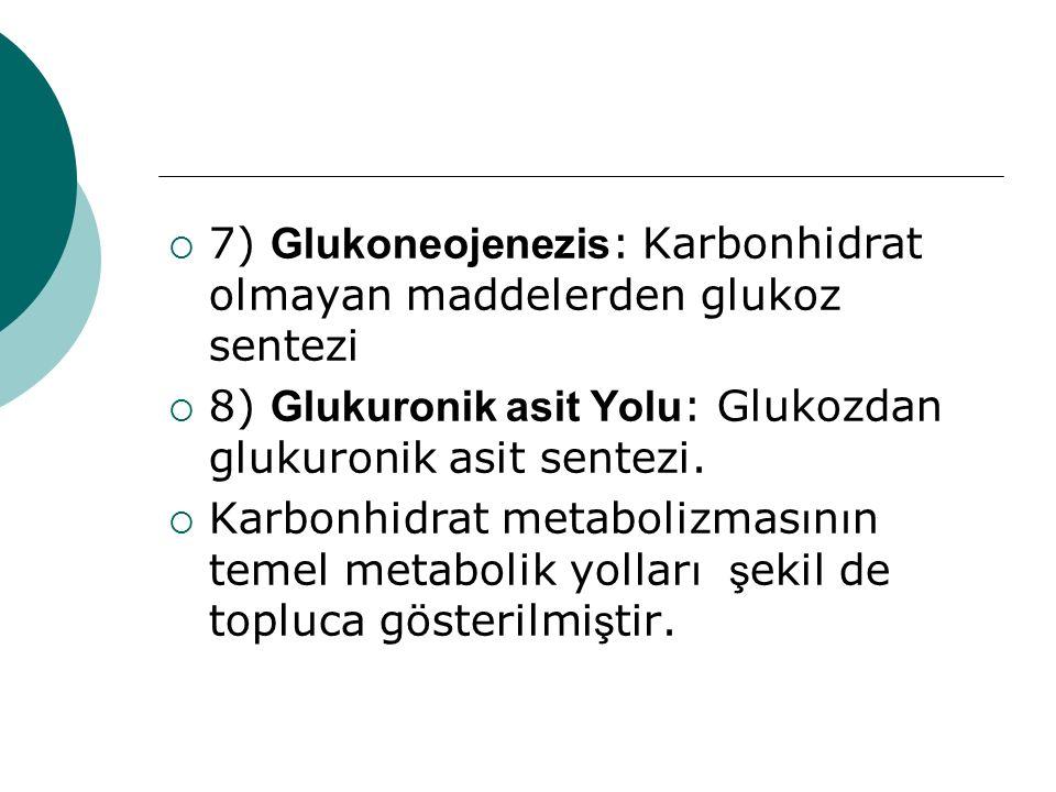  7) Glukoneojenezis : Karbonhidrat olmayan maddelerden glukoz sentezi  8) Glukuronik asit Yolu : Glukozdan glukuronik asit sentezi.  Karbonhidrat m