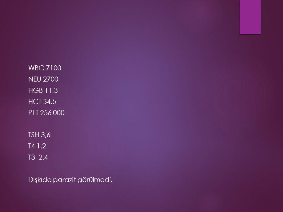 WBC 7100 NEU 2700 HGB 11,3 HCT 34.5 PLT 256 000 TSH 3,6 T4 1,2 T3 2,4 Dışkıda parazit görülmedi.