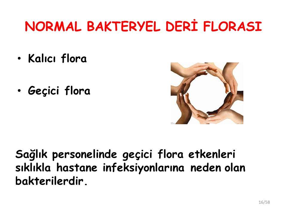 NORMAL BAKTERYEL DERİ FLORASI Kalıcı flora Geçici flora 16/58 Sağlık personelinde geçici flora etkenleri sıklıkla hastane infeksiyonlarına neden olan bakterilerdir.