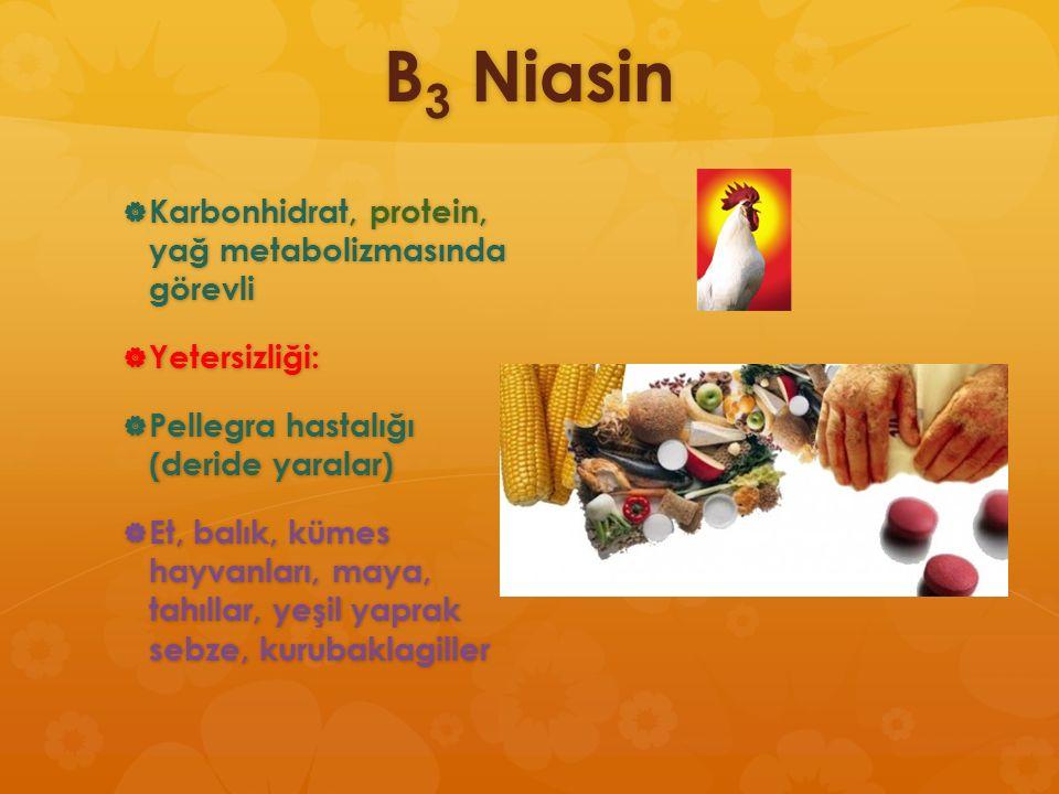 B 3 Niasin  Karbonhidrat, protein, yağ metabolizmasında görevli  Yetersizliği:  Pellegra hastalığı (deride yaralar)  Et, balık, kümes hayvanları,