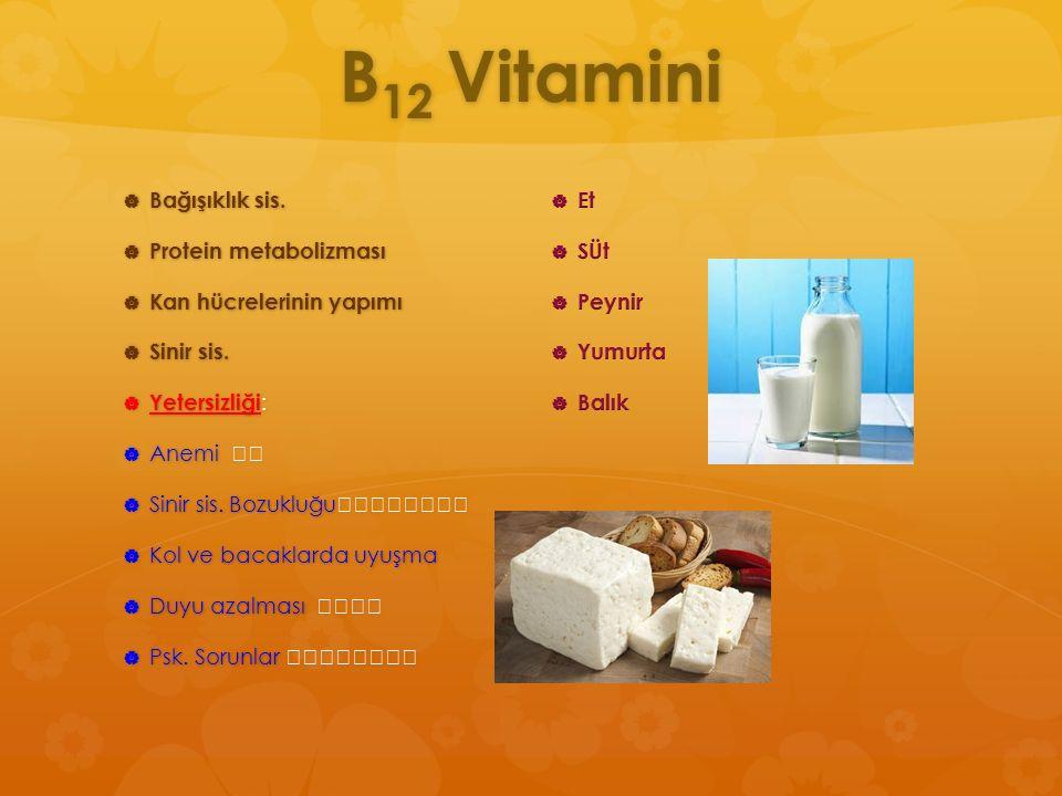 B 12 Vitamini  Bağışıklık sis.  Protein metabolizması  Kan hücrelerinin yapımı  Sinir sis.  Yetersizliği :  Anemi  Anemi  Sinir sis. Bozukluğu