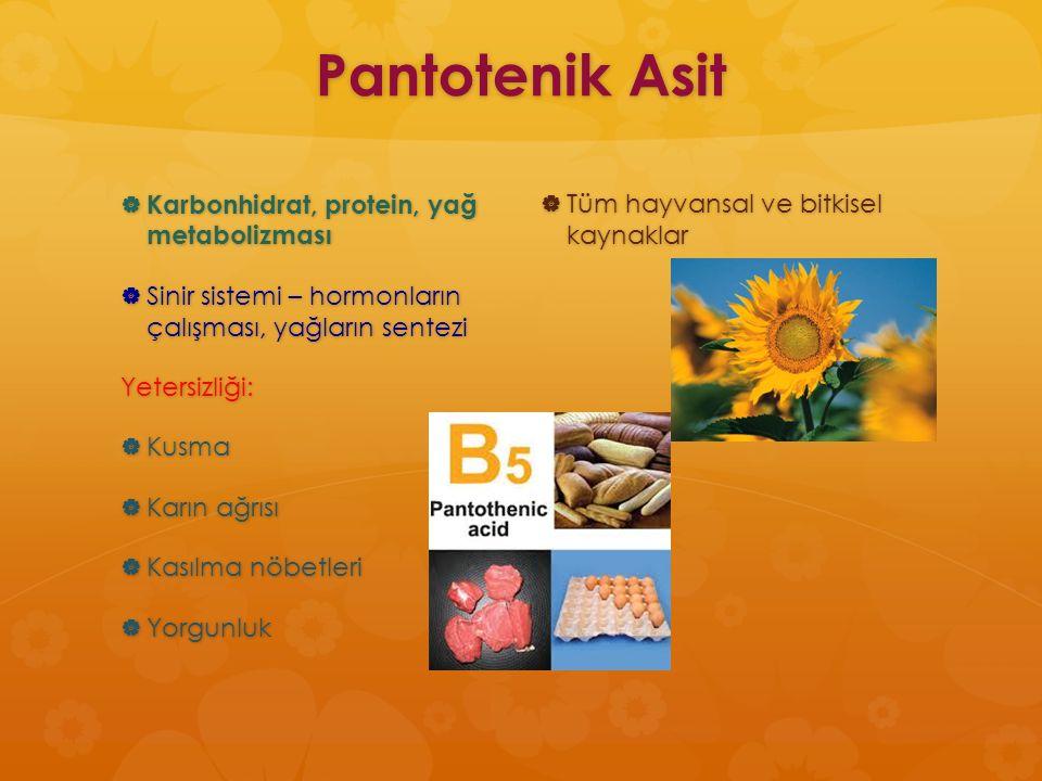 Pantotenik Asit  Karbonhidrat, protein, yağ metabolizması  Sinir sistemi – hormonların çalışması, yağların sentezi Yetersizliği:  Kusma  Karın ağr