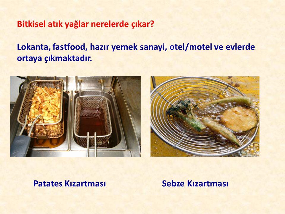 Bitkisel atık yağlar nerelerde çıkar? Lokanta, fastfood, hazır yemek sanayi, otel/motel ve evlerde ortaya çıkmaktadır. Patates KızartmasıSebze Kızartm