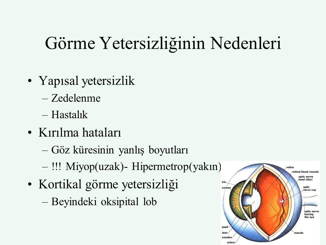 Görme Yetersizliğinin Nedenleri Yapısal yetersizlik –Zedelenme –Hastalık Kırılma hataları –Göz küresinin yanlış boyutları –!!! Miyop(uzak)- Hipermetro