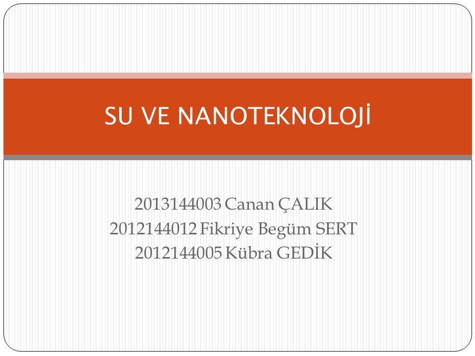 2013144003 Canan ÇALIK 2012144012 Fikriye Begüm SERT 2012144005 Kübra GEDİK SU VE NANOTEKNOLOJ İ