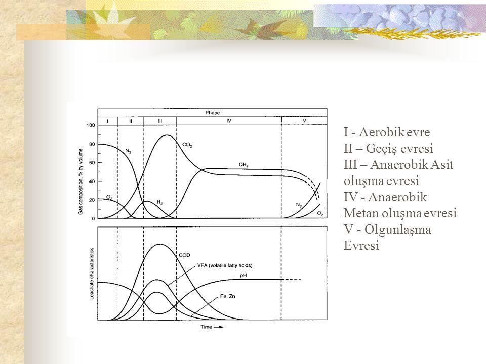 I - Aerobik evre II – Geçiş evresi III – Anaerobik Asit oluşma evresi IV - Anaerobik Metan oluşma evresi V - Olgunlaşma Evresi