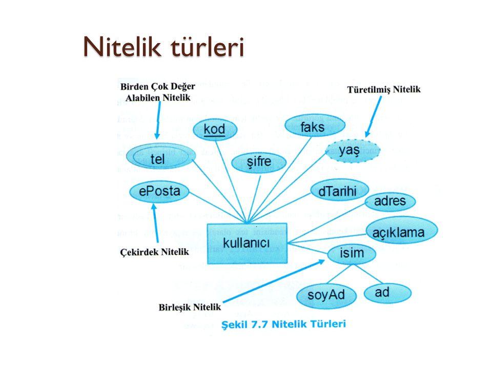 Nitelik türleri