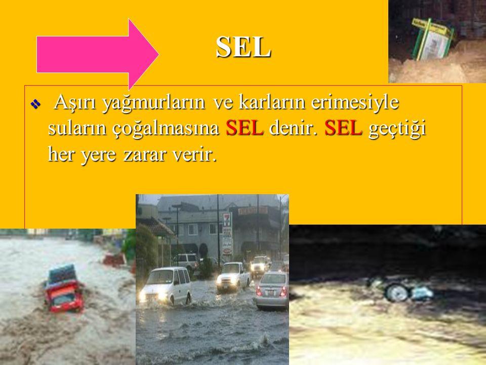 DOĞAL AFETLERugurlucky17 SEL  Aşırı yağmurların ve karların erimesiyle suların çoğalmasına SEL denir.