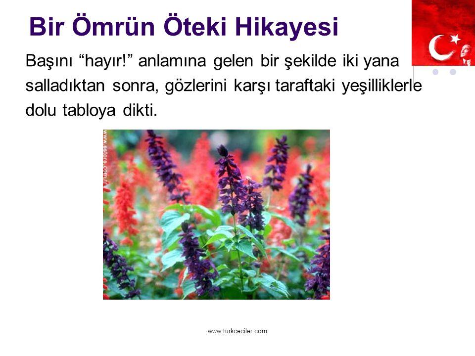 www.turkceciler.com Bir Ömrün Öteki Hikayesi Başını hayır! anlamına gelen bir şekilde iki yana salladıktan sonra, gözlerini karşı taraftaki yeşilliklerle dolu tabloya dikti.