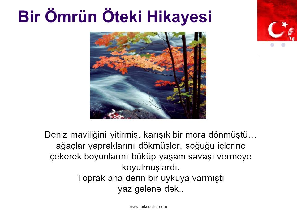 www.turkceciler.com Bir Ömrün Öteki Hikayesi Deniz maviliğini yitirmiş, karışık bir mora dönmüştü… ağaçlar yapraklarını dökmüşler, soğuğu içlerine çekerek boyunlarını büküp yaşam savaşı vermeye koyulmuşlardı.