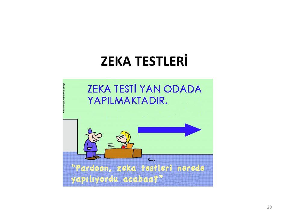 ZEKA TESTLERİ 29