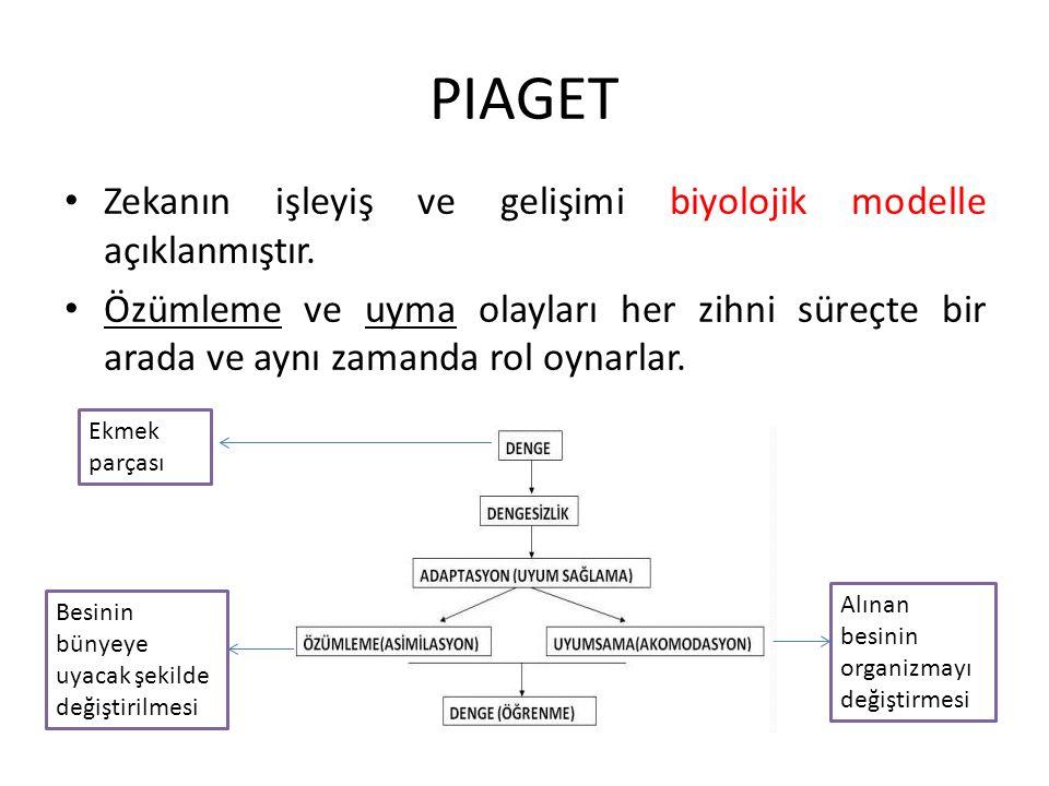 Biyolojik etmenler DEVLET (Platon) Bu toplumun birer parçası olan sizler, diyeceğim, birbirinizin kardeşisiniz.