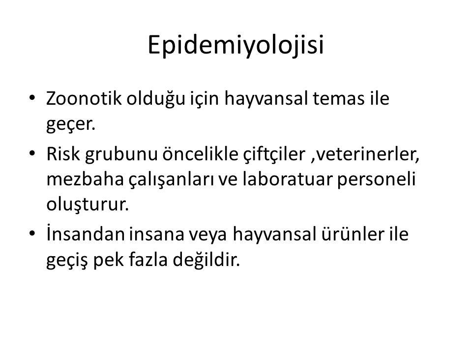 Epidemiyolojisi Zoonotik olduğu için hayvansal temas ile geçer.