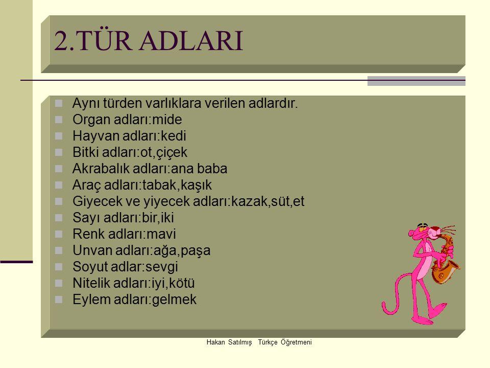 Hakan Satılmış Türkçe Öğretmeni 2.TÜR ADLARI Aynı türden varlıklara verilen adlardır. Organ adları:mide Hayvan adları:kedi Bitki adları:ot,çiçek Akrab
