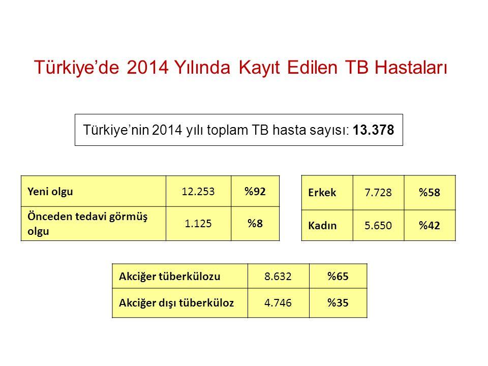 Türkiye'nin 2014 yılı toplam TB hasta sayısı: 13.378 Türkiye'de 2014 Yılında Kayıt Edilen TB Hastaları Yeni olgu12.253%92 Önceden tedavi görmüş olgu 1