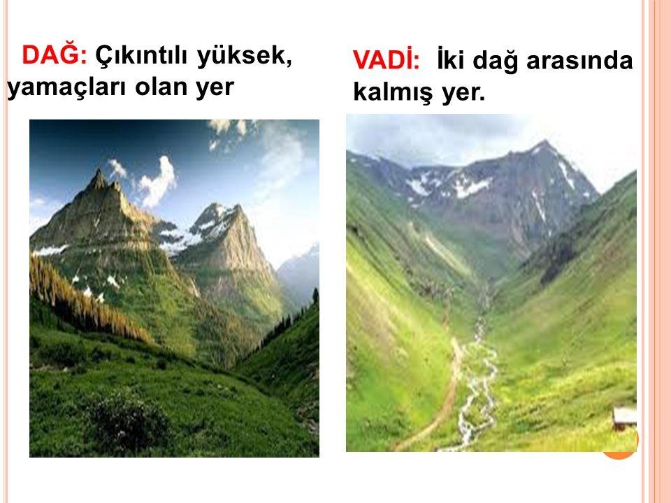 VADİ: İki dağ arasında kalmış yer. DAĞ: Çıkıntılı yüksek, yamaçları olan yer