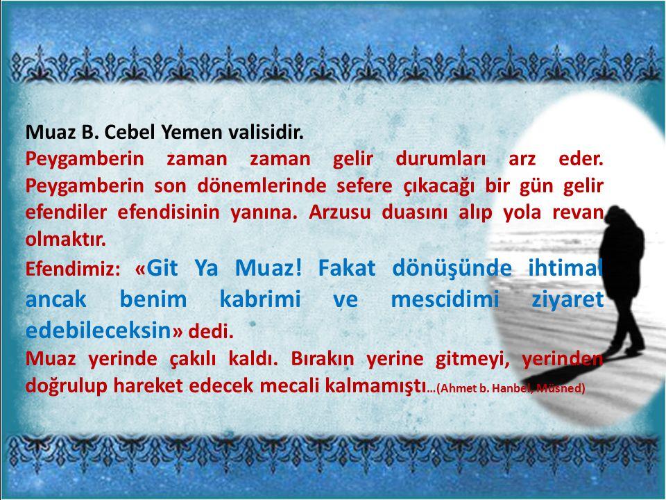 Muaz B. Cebel Yemen valisidir. Peygamberin zaman zaman gelir durumları arz eder.