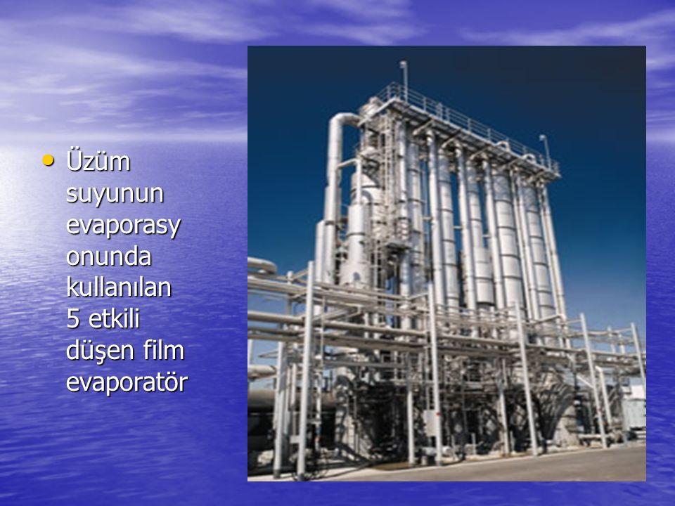Üzüm suyunun evaporasy onunda kullanılan 5 etkili düşen film evaporatör Üzüm suyunun evaporasy onunda kullanılan 5 etkili düşen film evaporatör