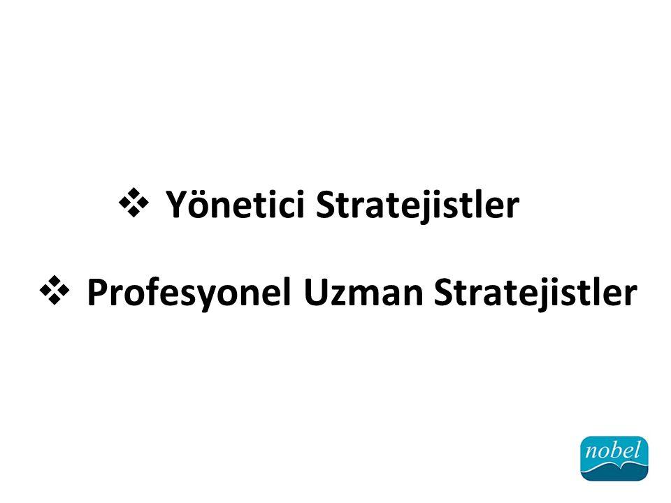  Yönetici Stratejistler  Profesyonel Uzman Stratejistler
