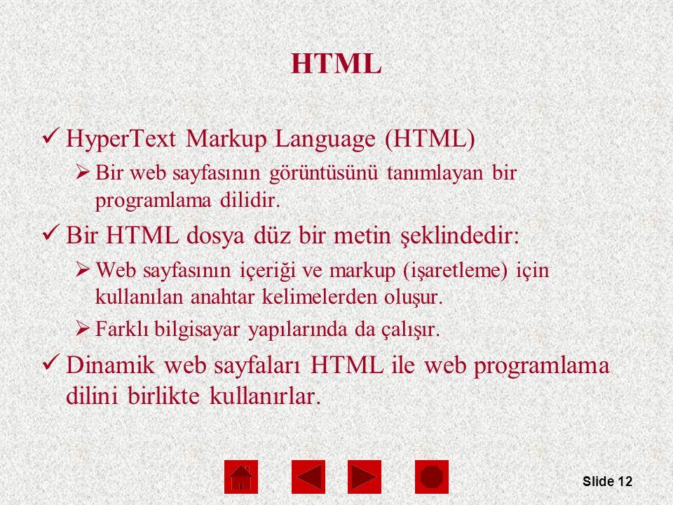 Slide 12 HTML HyperText Markup Language (HTML)  Bir web sayfasının görüntüsünü tanımlayan bir programlama dilidir.