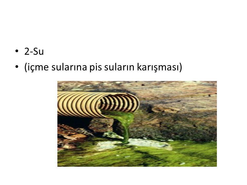 2-Su (içme sularına pis suların karışması)