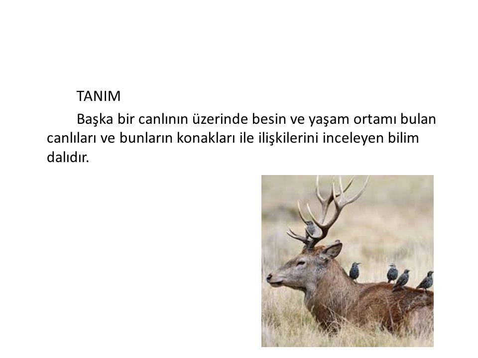 TANIM Başka bir canlının üzerinde besin ve yaşam ortamı bulan canlıları ve bunların konakları ile ilişkilerini inceleyen bilim dalıdır.