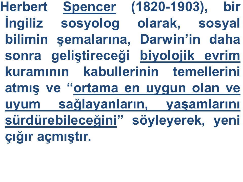 Herbert Spencer (1820-1903), bir İngiliz sosyolog olarak, sosyal bilimin şemalarına, Darwin'in daha sonra geliştireceği biyolojik evrim kuramının kabu