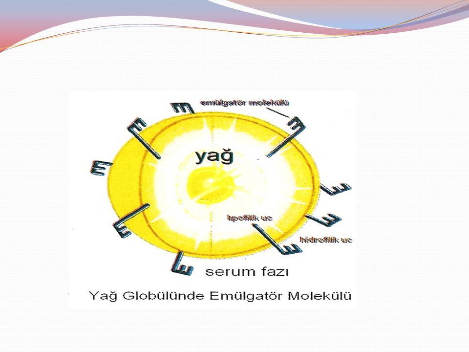 Emülgatör fonksiyon Emülgatörlerin dondurmada iki fonksiyonu bulunmaktadır.