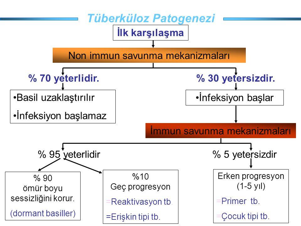 Tüberküloz Patogenezi İlk karşılaşma Non immun savunma mekanizmaları Basil uzaklaştırılır İnfeksiyon başlamaz İnfeksiyon başlar İmmun savunma mekanizm