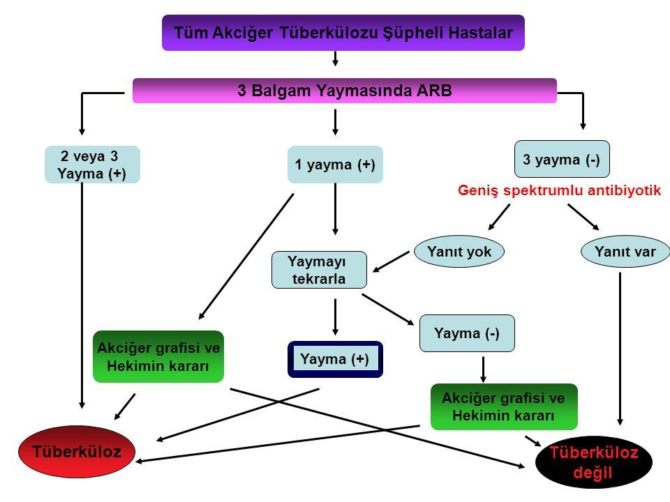 Tüm Akciğer Tüberkülozu Şüpheli Hastalar 3 Balgam Yaymasında ARB 2 veya 3 Yayma (+) 1 yayma (+) 3 yayma (-) Tüberküloz değil Yanıt yokYanıt var Akciğe