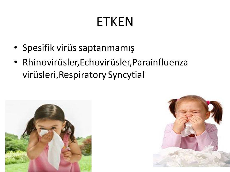 ETKEN Spesifik virüs saptanmamış Rhinovirüsler,Echovirüsler,Parainfluenza virüsleri,Respiratory Syncytial