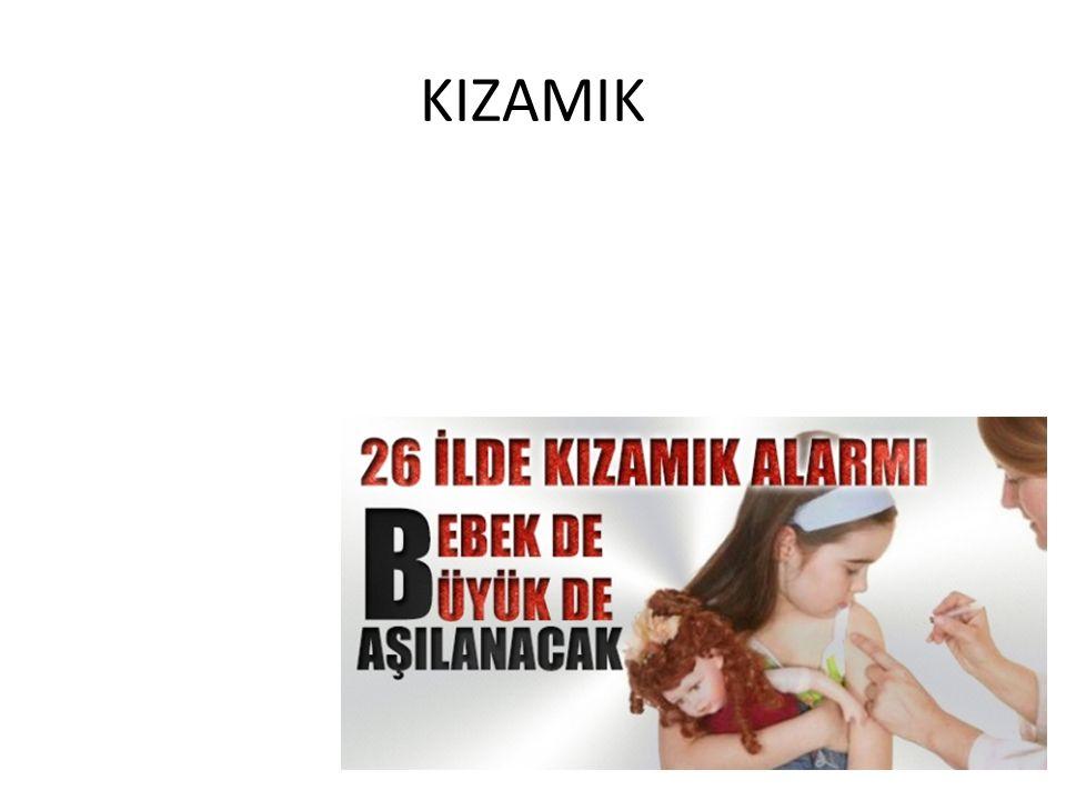 KIZAMIK