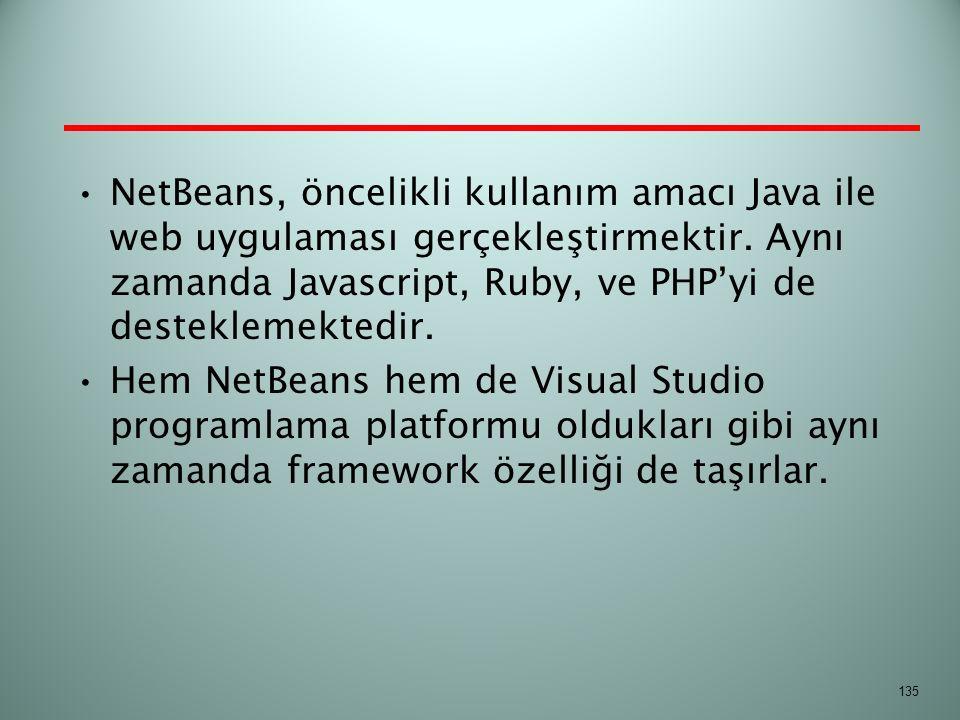 NetBeans, öncelikli kullanım amacı Java ile web uygulaması gerçekleştirmektir. Aynı zamanda Javascript, Ruby, ve PHP'yi de desteklemektedir. Hem NetBe
