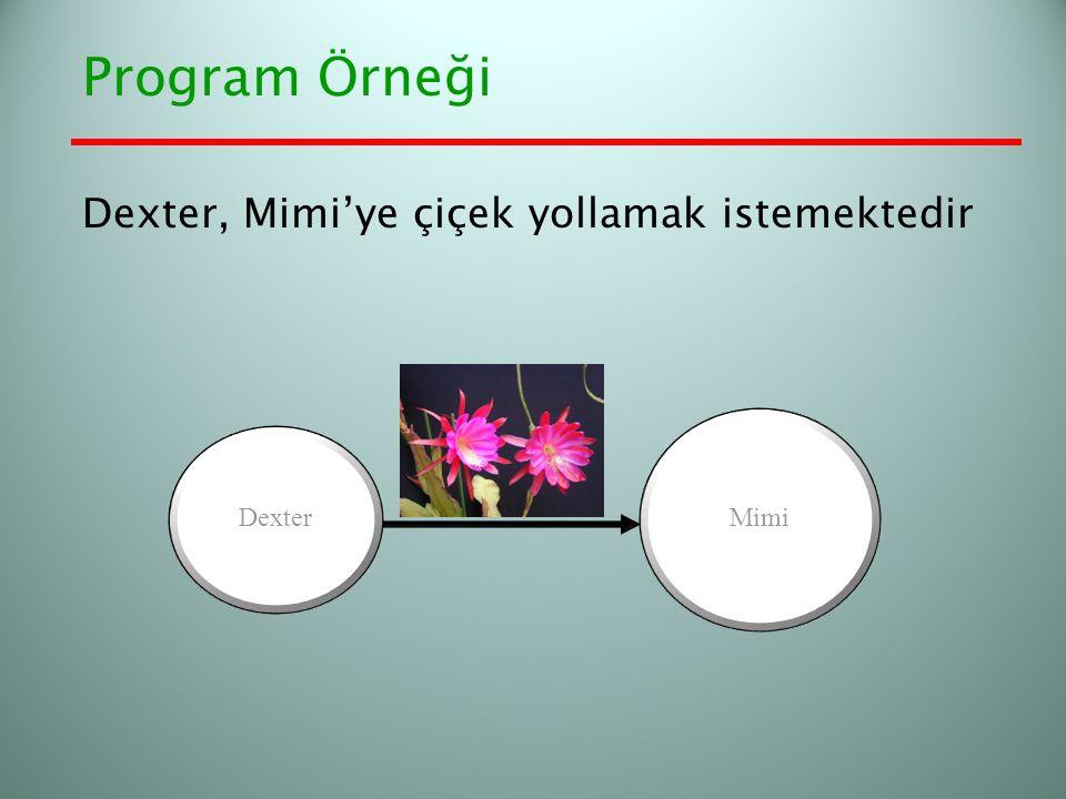 Program Örneği Dexter, Mimi'ye çiçek yollamak istemektedir Dexter Mimi