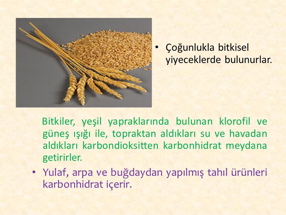 Çoğunlukla bitkisel yiyeceklerde bulunurlar. Bitkiler, yeşil yapraklarında bulunan klorofil ve güneş ışığı ile, topraktan aldıkları su ve havadan aldı
