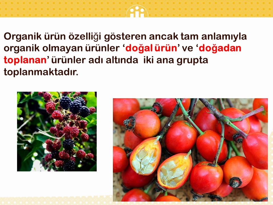 Organik ürün özelli ğ i gösteren ancak tam anlamıyla organik olmayan ürünler 'do ğ al ürün' ve 'do ğ adan toplanan' ürünler adı altında iki ana grupta toplanmaktadır.