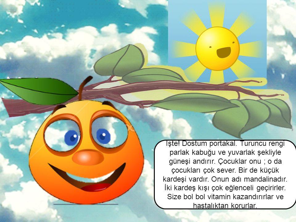 Benim adım Elma. Bir de kardeşim var onun adı da yeşil elma. Kardeşim biraz ekşidir. Onun tadı da ayrı güzeldir. Şimdi sizleri diğer meyve dostlarımla