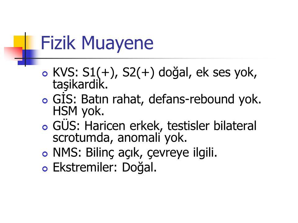 Fizik Muayene KVS: S1(+), S2(+) doğal, ek ses yok, taşikardik.