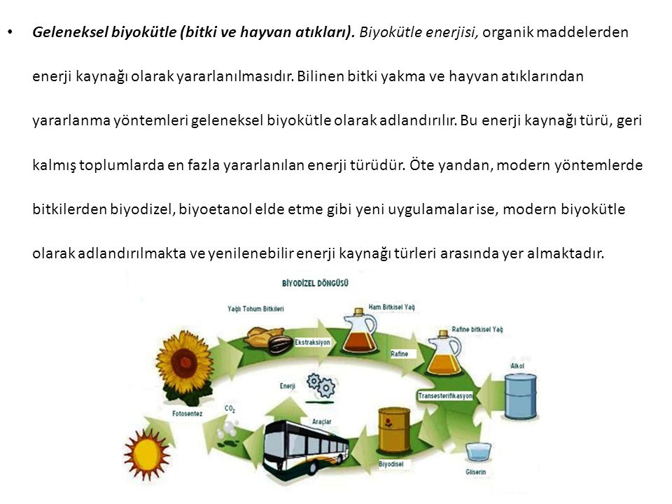 Geleneksel biyokütle (bitki ve hayvan atıkları). Biyokütle enerjisi, organik maddelerden enerji kaynağı olarak yararlanılmasıdır. Bilinen bitki yakma