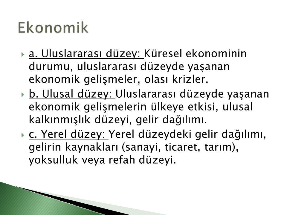  a. Uluslararası düzey: Küresel ekonominin durumu, uluslararası düzeyde yaşanan ekonomik gelişmeler, olası krizler.  b. Ulusal düzey: Uluslararası d