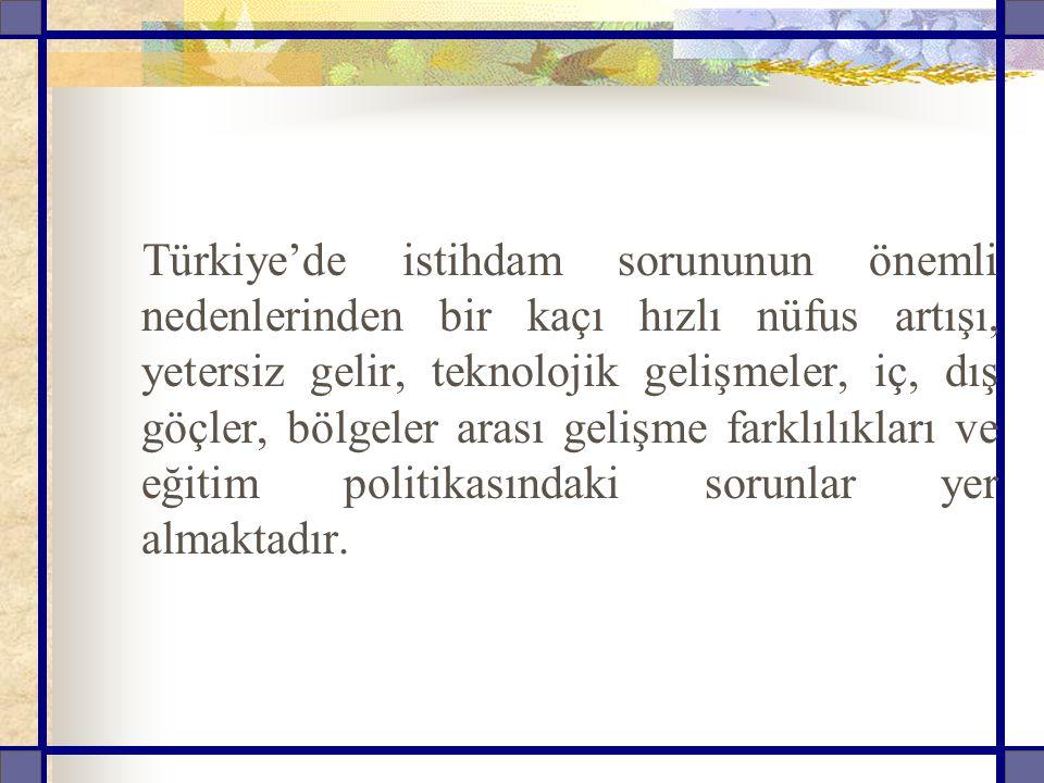 Türkiye'de istihdam sorununun önemli nedenlerinden bir kaçı hızlı nüfus artışı, yetersiz gelir, teknolojik gelişmeler, iç, dış göçler, bölgeler arası gelişme farklılıkları ve eğitim politikasındaki sorunlar yer almaktadır.